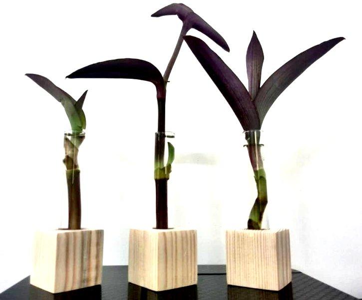 گلدان چوبی مدل Ik1002