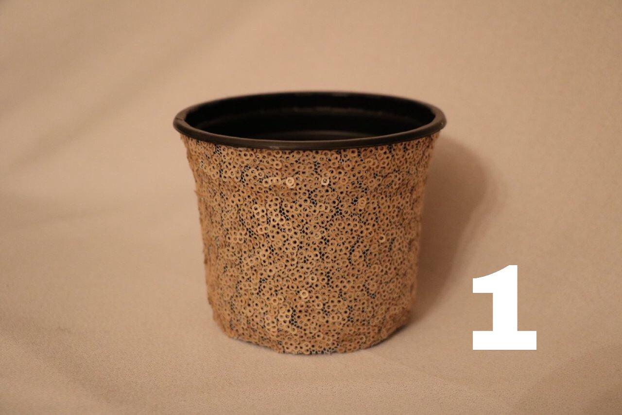 گلدان ژله ای کد 1