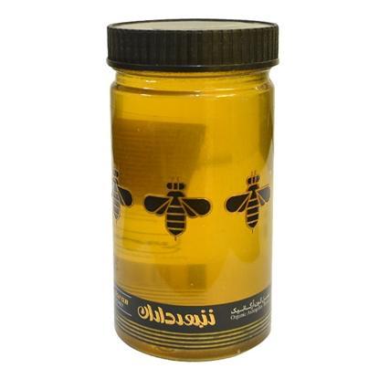 عسل ارگانیک گون زنبورداران حجم 600 گرم