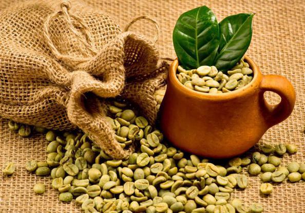 قهوه سبز ۲۵۰ گرم