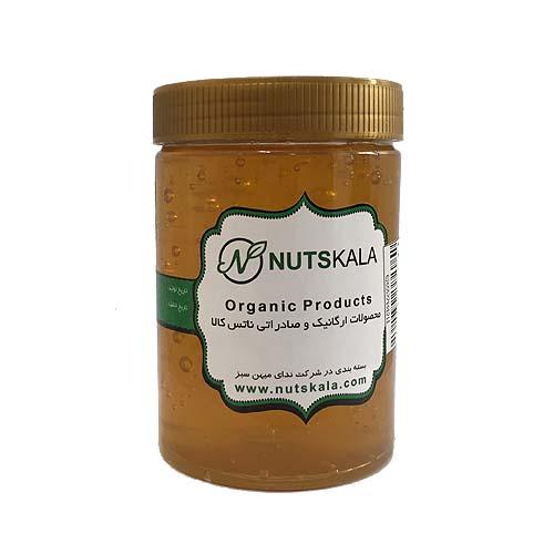 عسل طبیعی گون ناتس کالا جار یک کیلو